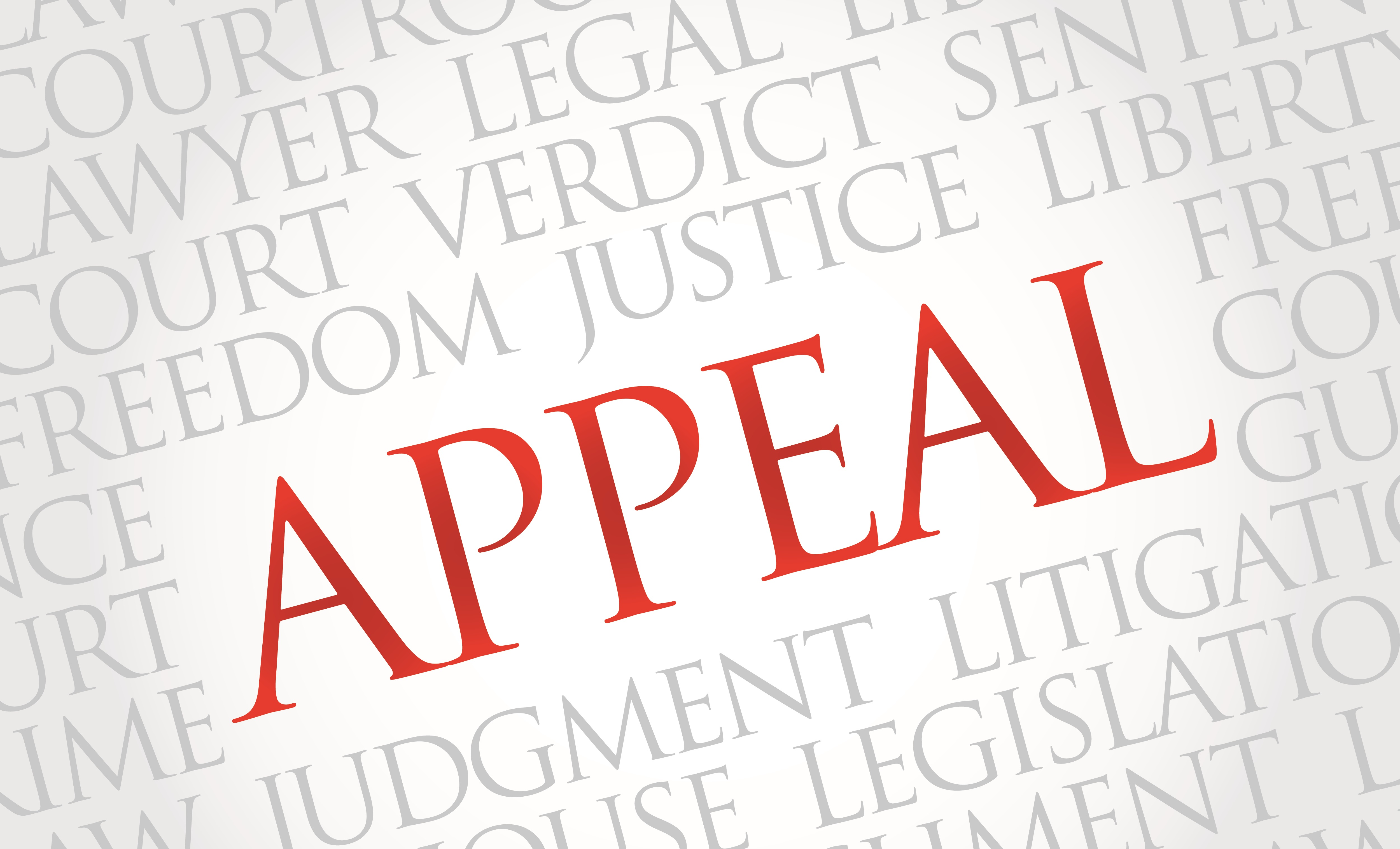 Social Security Disability Appeal Overview